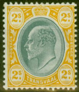 Transvaal 1905 2 1/2d Black & Blue SG263 Fine & Fresh Lightly Mtd Mint