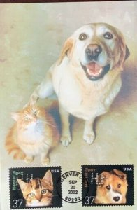 HNLP Hideaki Nakano Greeting Card Spay Neuter 3671/2 Dog Cat We Have to Pee