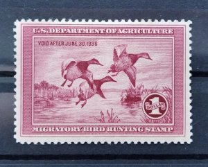 US, Duck stamp, unused, 1935