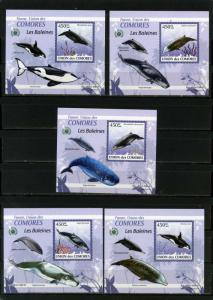 COMORO ISLANDS 2009 WHALES SET OF 5 DELUXE S/S MNH