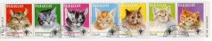 266259 Paraguay 1979 year used stamps CATS in strip