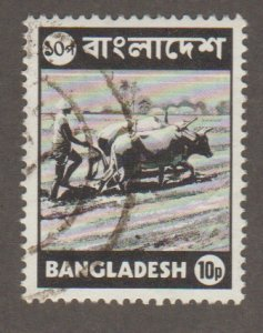 Bangladesh 45 ploughing field with oxen