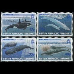 BR.ANTARCTIC TERR. 1996 - Scott# 244-7 Whales Set of 4 NH