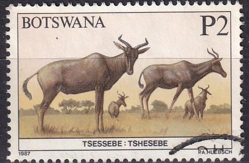 Botswana #421 F-VF Used  CV $5.50  (A19638)