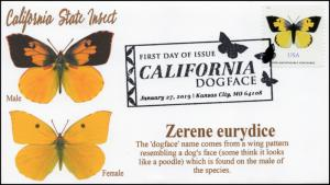 19-008, 2019, California Dog Face Butterfly, Pictorial  Postmark, FDC,