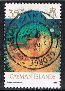 CAYMAN IS. 180379 - 1986 35c Marine Life used