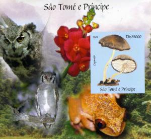 SAO TOME & PRINCIPE 2004 BIRDS OWLS Mushrooms s/s Imperforated mnh.vf