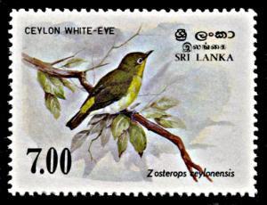 Sri Lanka 877, MNH, Ceylon White-Eye Bird