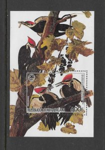 BIRDS - CENTRAL AFRICAN REPUBLIC #716  MNH