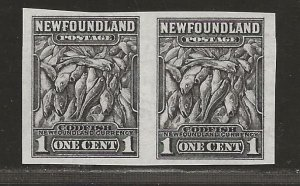 NEWFOUNDLAND  SC# 253a   IMPERF PAIR  VF/MNG