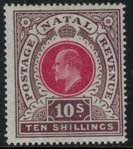 Natal 1902-1903 SC 95 MLH