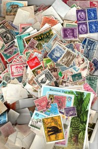 Worldwide  Lot-   Half Pound Of Stamps
