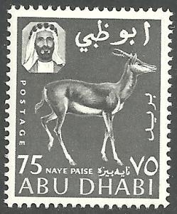 ABU DHABI SCOTT 7