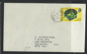 DOMINICA COVER (P1902B) 1976 QEII 20C  KINGS HILL  TO ENGLAND
