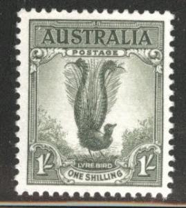 Australia Scott 300 MH* Lyre bird