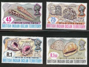 British Indian Ocean Territory Scott 59-62 MNH** shell set