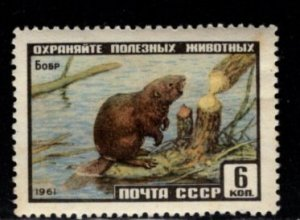 Russia - #2430 Beaver - MNH