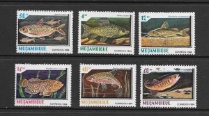 FISH - MOZAMBIQUE #920-5  MNH