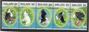 1983    MALAWI  -  SG  674 / 678  -  AFRICAN FISH EAGLE  - (Strip of 5)  - UMM