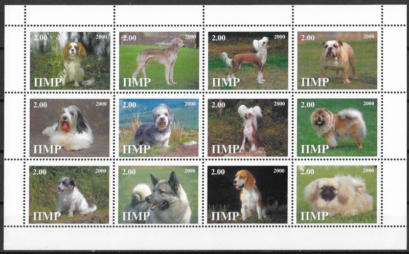 Itmp MNH S/S Pedigree Dogs 2000 12 Stamps