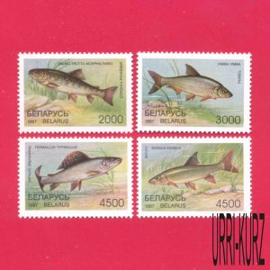 BELARUS 1997 Nature Fauna Fish Fishes 4v Sc204-207 Mi217-220 MNH