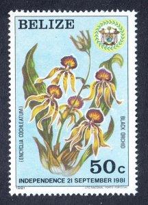 Belize - Scott #596 - MNH - Trace of fingerprint on gum - SCV $15