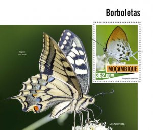Mozambique Butterflies Stamps 2020 MNH Swallowtail Butterfly Insects Fauna 1v SS