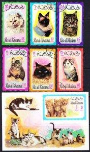 Ras al Khaima cats/kittens set with mint SS