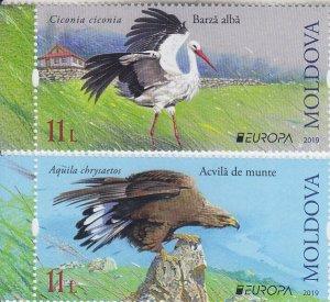 2019 Moldova Birds Europa (2) (Scott NA) MNH