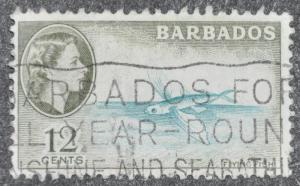 DYNAMITE Stamps: Barbados Scott #242 - USED