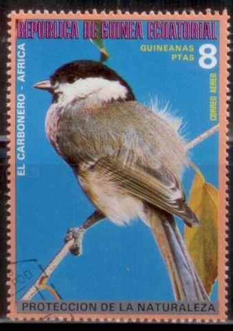 Equatorial Guinea Birds Used