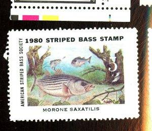 1980 STRIPED BASS STP FVF