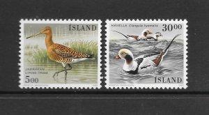 BIRDS - ICELAND #665-6 MNH