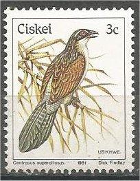CISKEI, 1981, MNH 3c, Birds, Scott 7