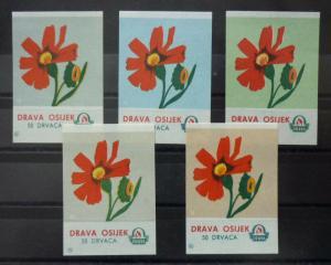 Match Box Labels! flora flower flowers nature osijek croatia yugoslavia GJ49