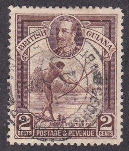 British Guiana # 211, Indian Shooting Fish, Used, 1/3 Cat.