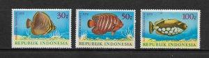 FISH- INDONESIA #834-6  MH