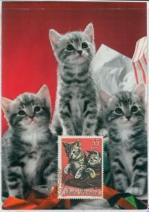 32491    MAXIMUM CARD - Animals CATS CAT : ROMANIA 1965  #6