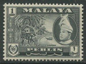 STAMP STATION PERTH Perlis #29 Raja Syed Putra Definitive MVLH 1957-62