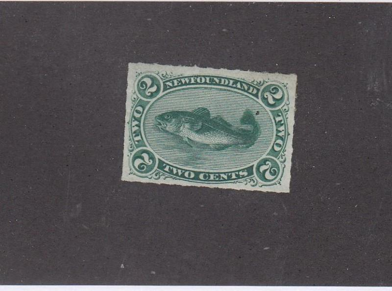 NEWFOUNDLAND # 38 VF-MNG 2cts CODFISH IMPERF CAT VALUE $300+