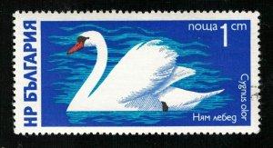 Bird Bulgaria (TS-692)