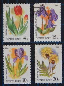 Flowers, (2511-Т)