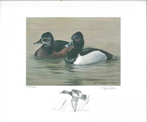 MISSOURI #11 1989 STATE DUCK  STAMP PRINT RING NECKED GEESE K Dickson Pencil Rem