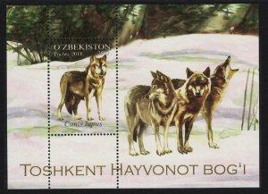Uzbekistan Wolfs Canis lupus MS