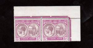St Kitts & Nevis #47 Very Fine Never Hinged Pair