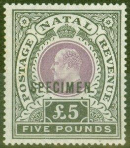 Natal 1902 £5 Mauve & Black Specimen SG144s V.F Mtd Mint