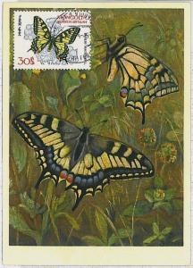 MAXIMUM CARD : intects BUTTERFLIES - MONGOLIA 1963   #2