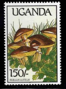 Uganda   Scott 667  MNH** Mushroom stamp