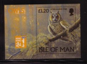 Isle of Man Sc 733 1997 Owl stamp sheet mint NH