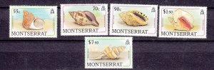 J26566 jlstamps 1988 Br colony montserrat mnh sea shell stamps part of set